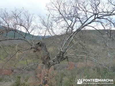 Cascadas del Aljibe;senderismo interpretativo;curso senderismo;ropa para senderismo